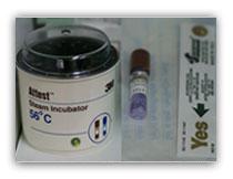 esterilizacion esporas